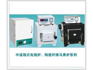 中温度电阻炉系列